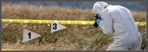 become a crime scene investigator